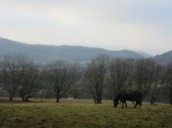 Tongwynlais, Wales
